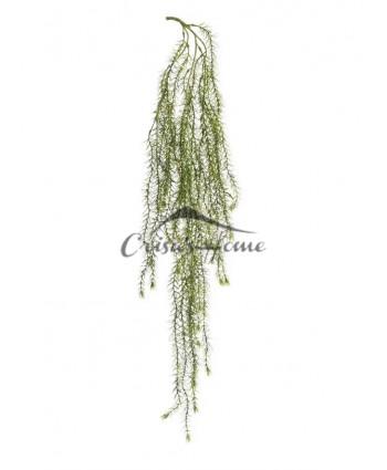 Ramura Columnea Green